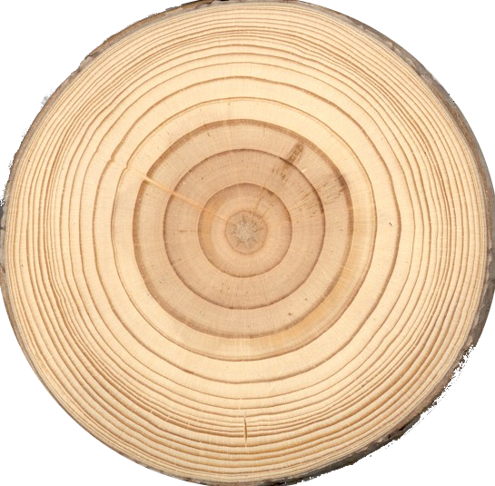 Definition Of Tree Rings