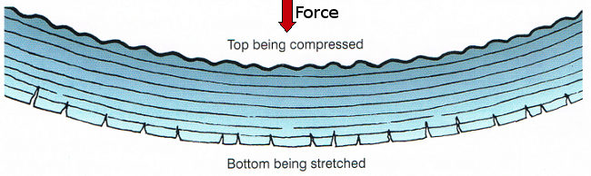 forces in a beam