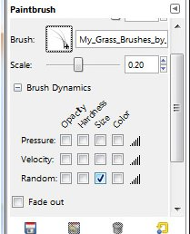brush dynamic